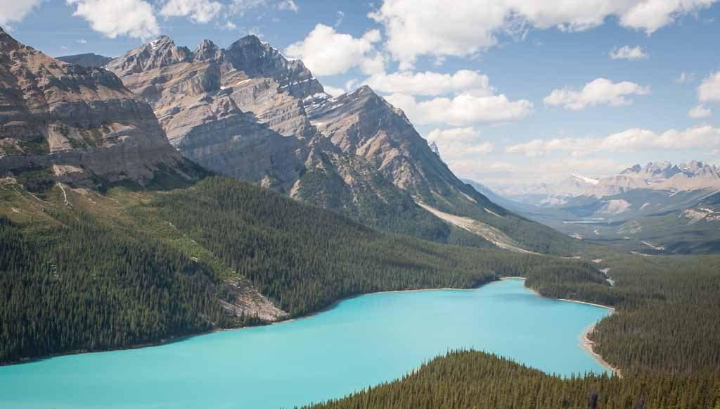 turquoise-blue-peyto-lake-banff-national-park